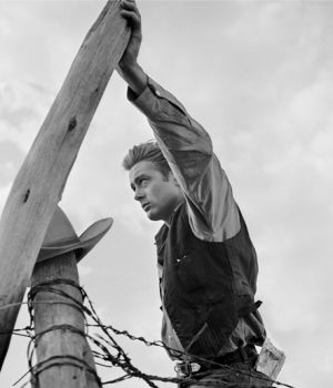 James Dean Hand on Pole Giant 1955 by