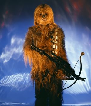 Chewbacca - Return of the Jedi by
