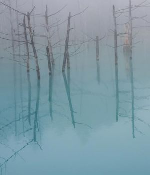 Blue Pond by