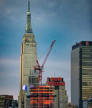 NYC New Yorker by