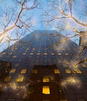 Canopy of Lights, New York 2016 by