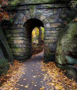 The Ramble Arch with Fallen Leaves by