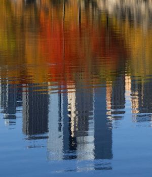 Autumn Skyline Reflections, New York 2016 by