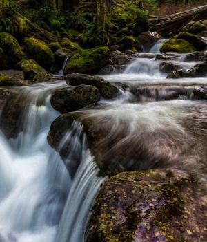 Oneonta Creek by