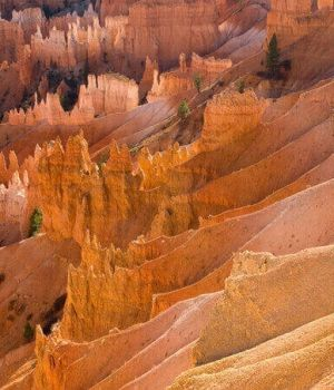 Bryce Canyon by